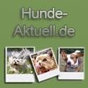 http://www.hunde-aktuell.de